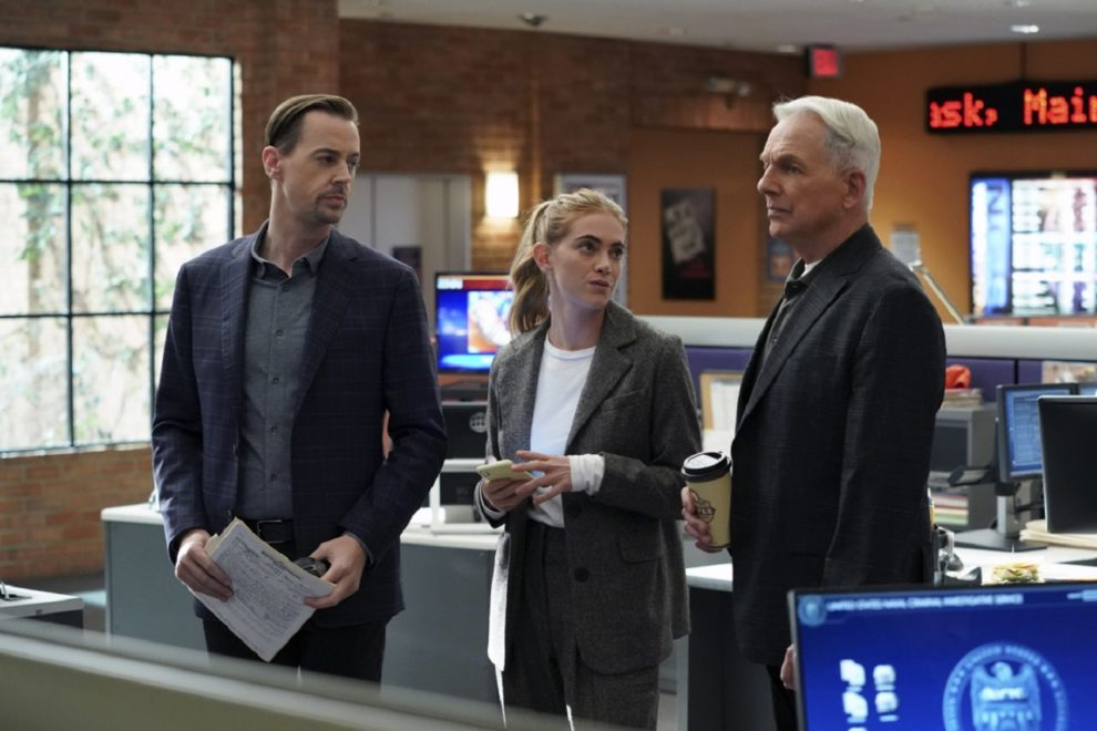 What Do You Think Is Going To Happen On Ncis Season 18 Episode 13 Interviewer Pr